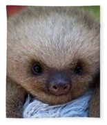 Baby Sloth Fleece Blanket