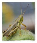 Back Side View Of Green Grasshopper....   # Fleece Blanket