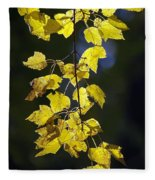Backlit Leaves Of Autumn Fleece Blanket
