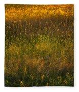 Backlit Meadow Grasses Fleece Blanket