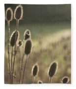 Backlit Teasel Fleece Blanket