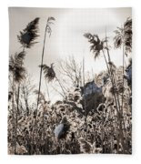 Backlit Winter Reeds Fleece Blanket