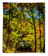 Backroads Of The Great Smoky Mountains National Park Fleece Blanket