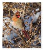Backyard Birds Female Nothern Cardinal Fleece Blanket