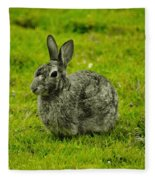 Backyard Bunny In Black White And Green Fleece Blanket