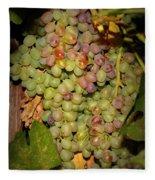 Backyard Garden Series -hidden Grape Cluster Fleece Blanket