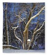Backyard Trees Fleece Blanket