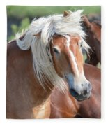 Bad Hair Day 8024 Fleece Blanket