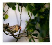 Bad Hair Day-female Northern Cardinal Fleece Blanket