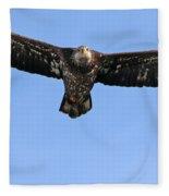 Bald Eagle 1238 Fleece Blanket