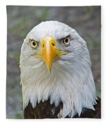Bald Eagle 2 Fleece Blanket