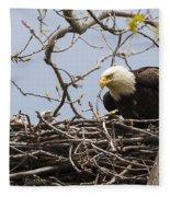 Bald Eagle And Eaglet Fleece Blanket