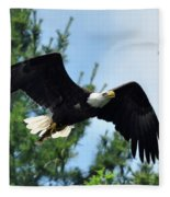Bald Eagle Feeding 2 Fleece Blanket