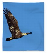 Bald Eagle In Flight Fleece Blanket