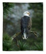 Bald Eagle In Tree Fleece Blanket