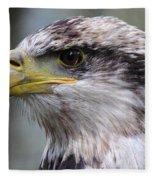 Bald Eagle - Juvenile - Profile Fleece Blanket
