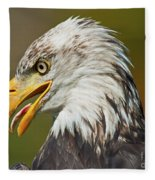 Bald Eagle... Fleece Blanket