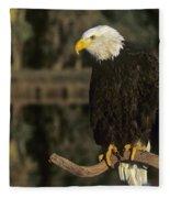 Bald Eagle On Dead Snag Wildlife Rescue Fleece Blanket