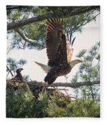 Bald Eagle With Eaglet Fleece Blanket