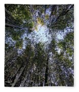 Bamboo Sky Fleece Blanket
