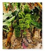 Banana Tree Fleece Blanket