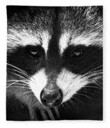 Bandit Fleece Blanket