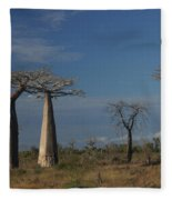 baobab parkway of Madagascar Fleece Blanket