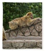 Barbary Macaques Fleece Blanket