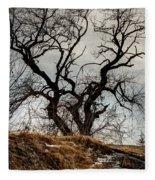 Bare Tree On The Hill Fleece Blanket