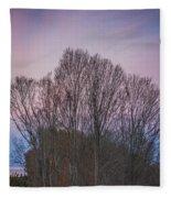 Bare Trees And Autumn Sky Fleece Blanket