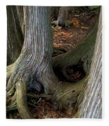 Barky Barky Trees Fleece Blanket