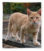 Barn Cat Fleece Blanket