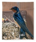Barn Swallow At Nest Fleece Blanket