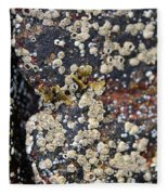 Barnacles Fleece Blanket
