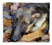 Baron In The Leaves Fleece Blanket