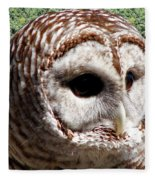 Barred Owl 2 Fleece Blanket