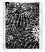 Barrel Cactus Poster Fleece Blanket