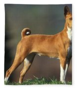 Basenji Dog Fleece Blanket