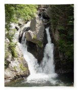 Bash Bish Falls 1 Fleece Blanket