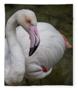 Bashful And Shy Flamingo. Fleece Blanket