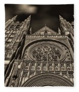 Basilica Of Saints Peter And Paul  Fleece Blanket