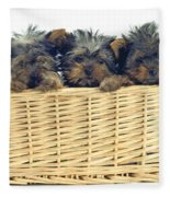 Basket Of Yorkies Fleece Blanket