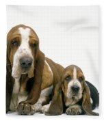 Basset Hound Dogs Fleece Blanket