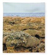 Sabellariid Worm Reef  Fleece Blanket