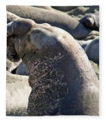 Bull Elephant Seal Battle Scars Fleece Blanket