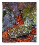 Battlefield In Fall Colors Fleece Blanket