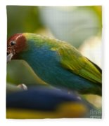 Bay-headed Tanager - Tangara Gyrola Fleece Blanket