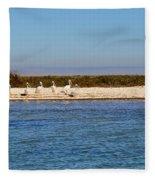 Beach Birds Fleece Blanket