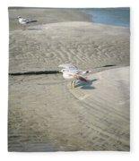 Beach Scene Fleece Blanket