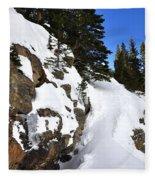 Bear Lake 4451 2 Fleece Blanket